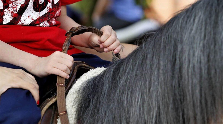 Mãos de criança na sela de um cavalo para texto Benefícios da Equoterapia para autistas - Foto de Marco Quintana